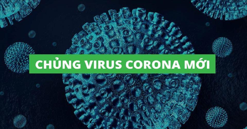 Virut corona là gì?
